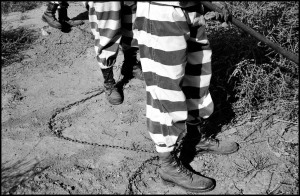 USA. Arizona. Phoenix. 1998. Maricopa County is home to the country's only female chain gang.  Their daily routine includes a 5:15am wake up call. Among their duties are to clear tumbleweeds from empty lots.